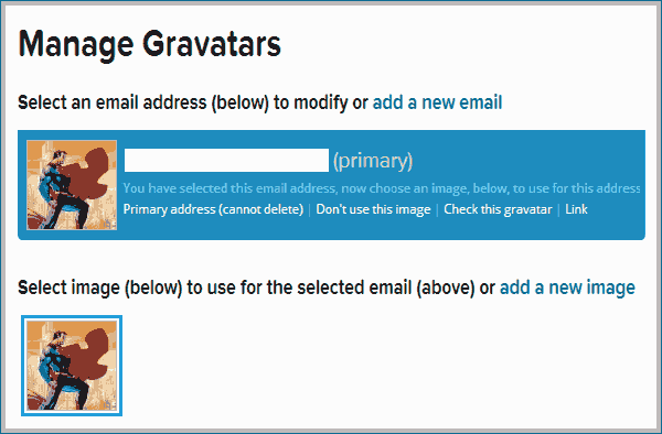 gravatar picture added